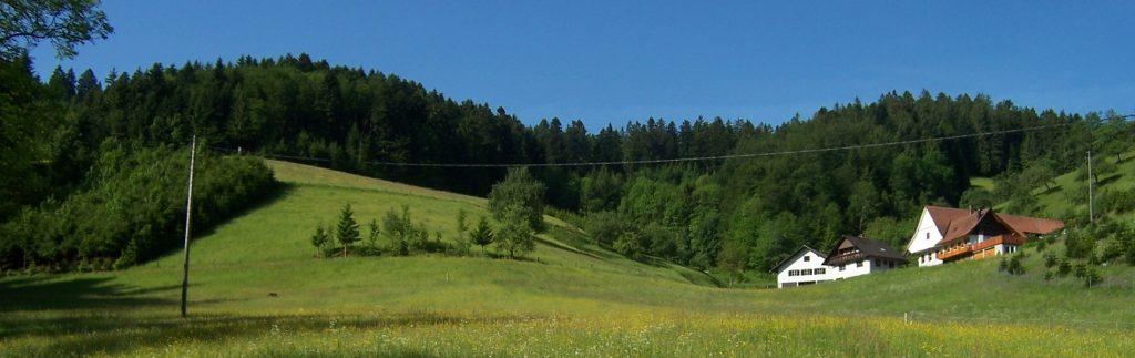 Stinneshof Oberharmersbach
