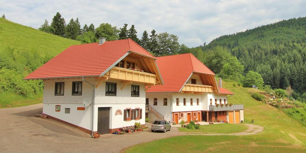 Ferienwohnung Stinneshof Schwarzwald Oberharmesbach