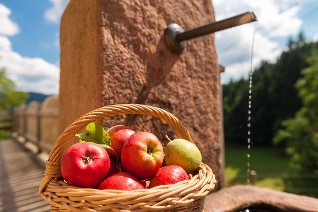 Apfelmostwochen in Oberharmersbach