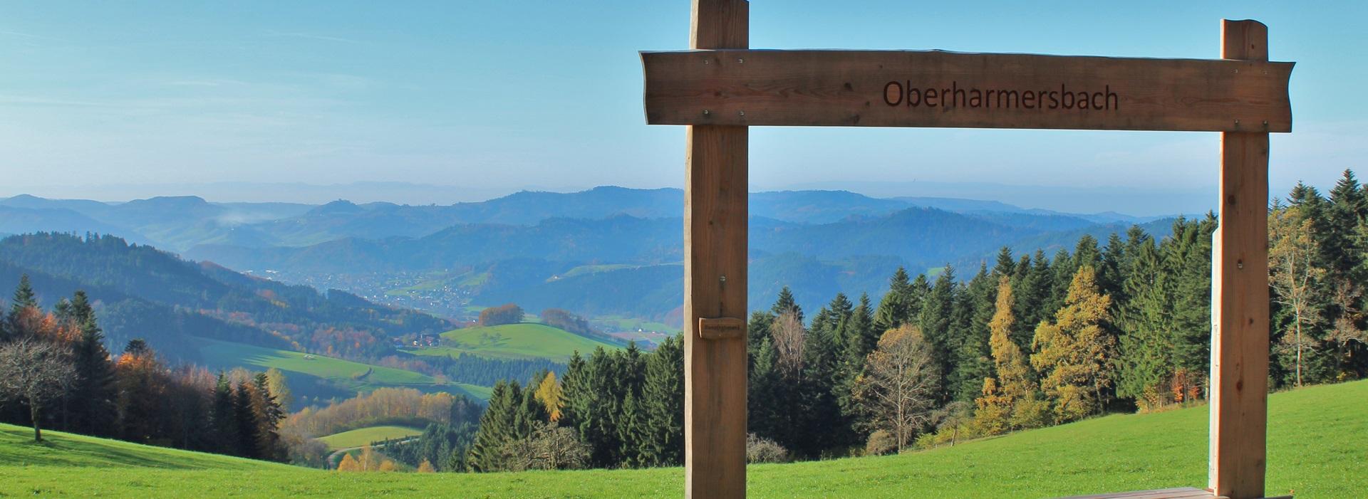 Bilderrahmen Oberharmersbach Ferienwohnung Stinneshof