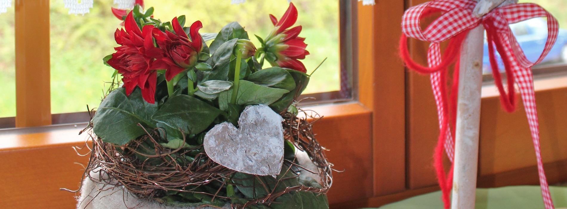 Fensterbank Ferienwohnung Stinneshof