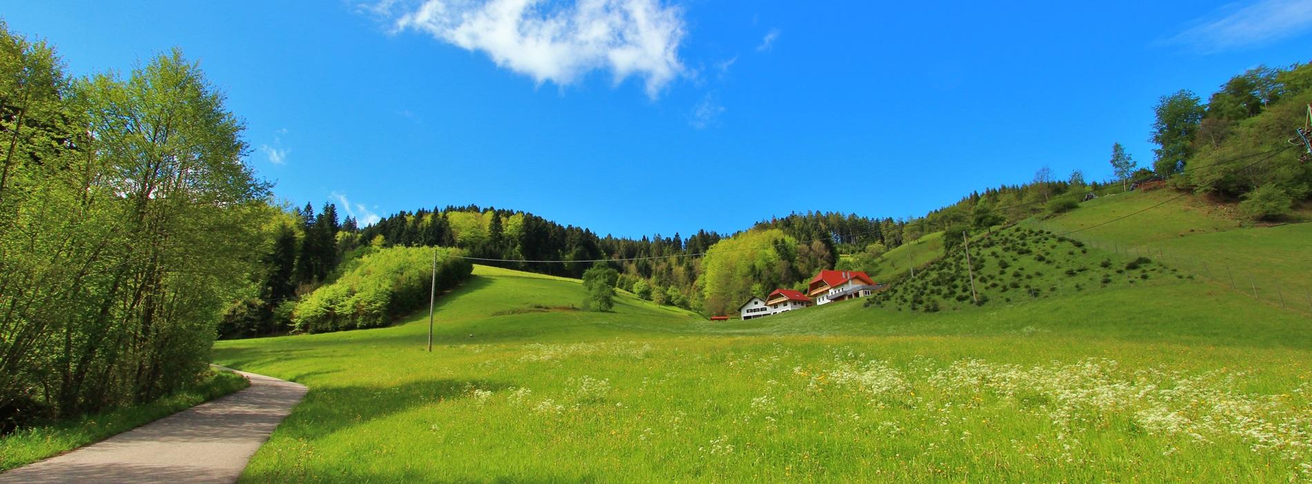 Anfahrt Stinneshof Zuwald Oberharmersbach