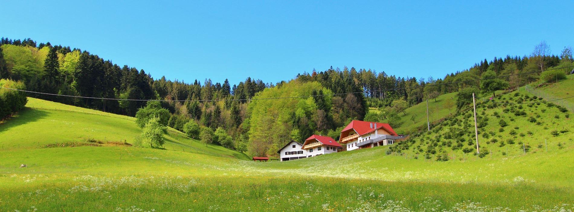 Stinneshof Ferienwohnung Zuwald Oberharmersbach