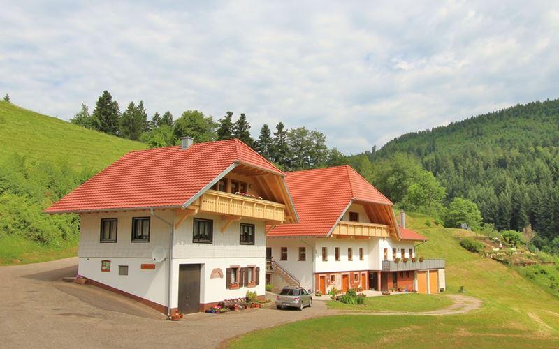 Stinneshof Oberharmersbach Ferienwohnung