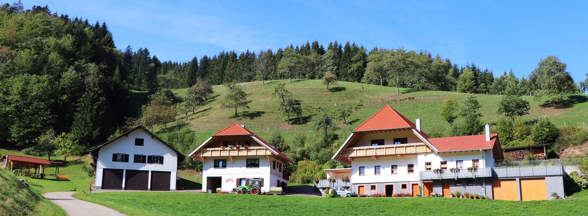 Ansicht vom Stinneshof mit Bauernhaus, Ferienhaus und Speicher