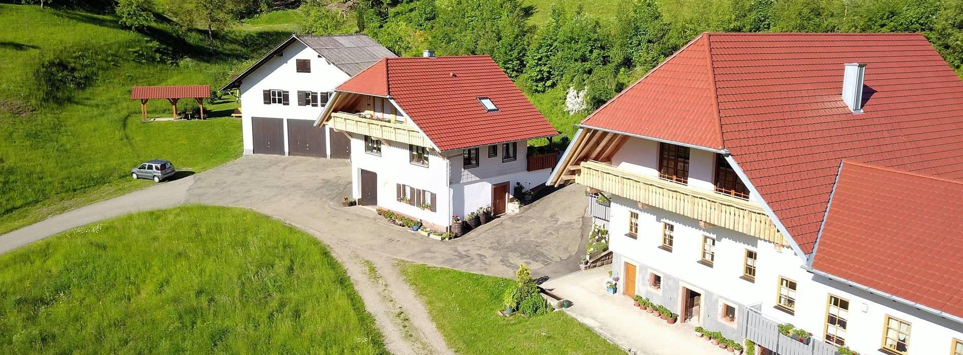 Drohnenfoto vom Stinneshof mit Ferienwohnung im Mittelpinkt