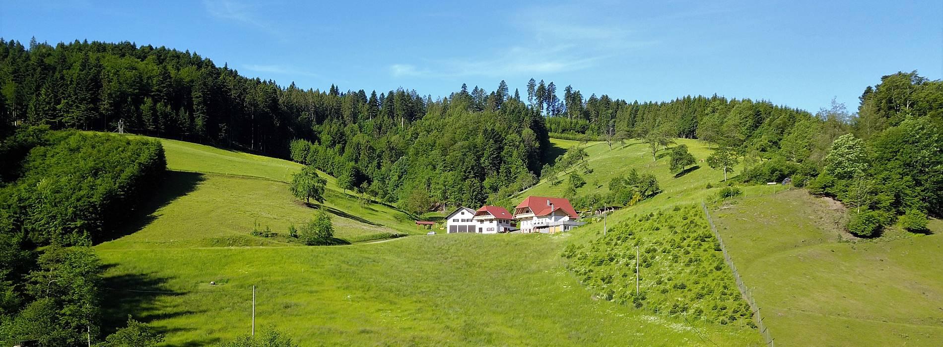 Aussicht auf den Stinneshof vom Zuwälder Tal aus gesehen