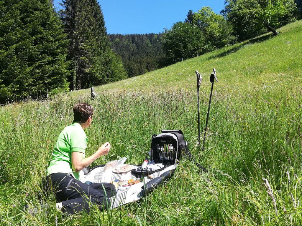 Picknick in Zuwald auf der Wiese