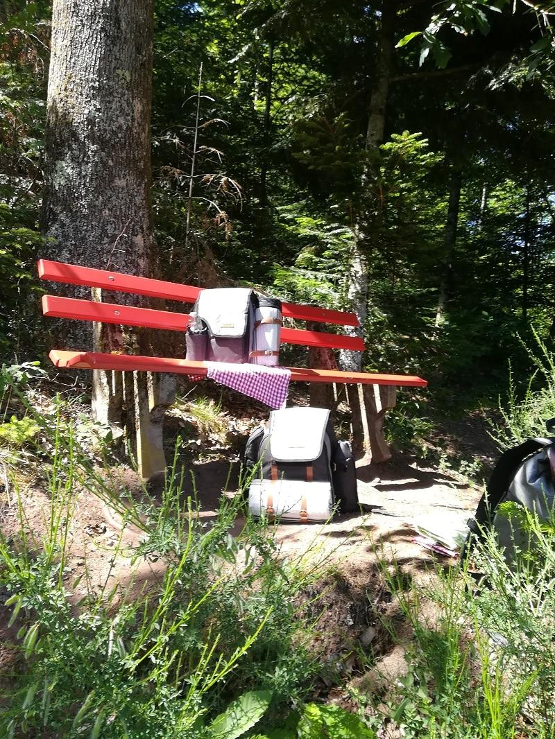 Picknickrucksack auf der Sitzbank im Wald